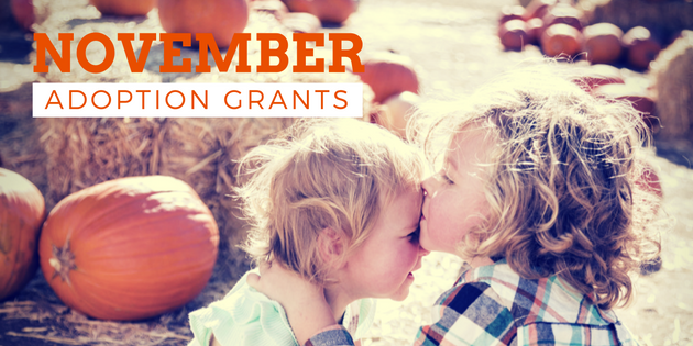 november adoption grants