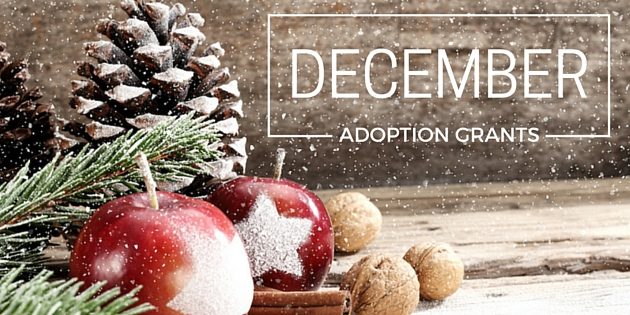 adoption grants december